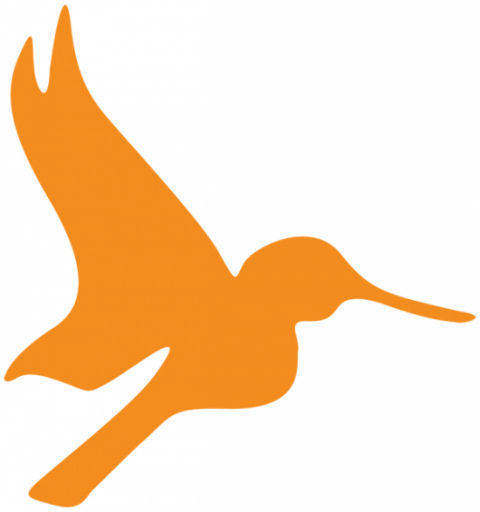 Orange hummingbird graphic