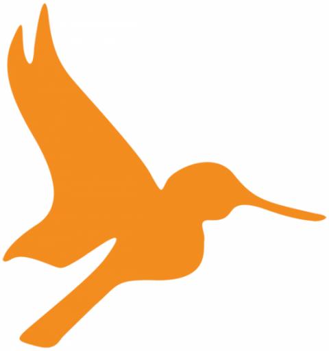 Orange hummingbird graphic