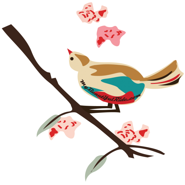 Close-up-Birds-on-a-Branch red turquoise tan bird branch pink red blossoms silver green leaves
