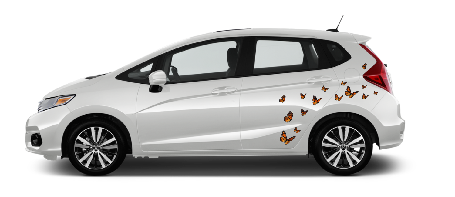 White Honda Fit with Monarch butterfly decals near rear wheel well